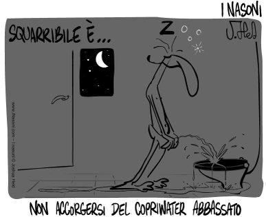 Squarribile03